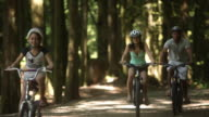 WS PAN Parents with children (8-11) cycling in Squamish Alice Lake Park / Squamish, British Columbia, Canada