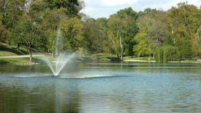 Park with water fountain on a lake, HD video