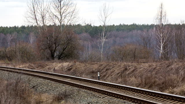Passenger train at suburban railway.