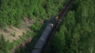 WS TS AERIAL Passenger train passing by lush forest