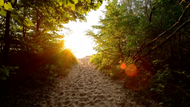 Path to the steep coast at sunrise, Langenberg, Bansin, Usedom, Baltic Sea, Western Pomerania, Germany