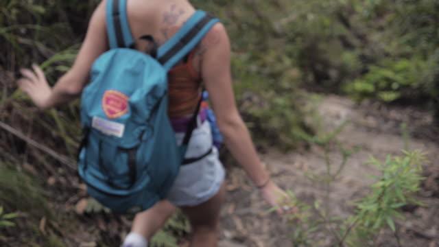 Path Walk 2