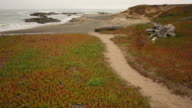 A pathway to the beach on the Mendocino coast with clouds and waves.