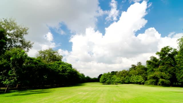 Peaceful Park Time Lapse