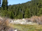 A peaceful river runs through a forested Sequoia Valley.