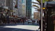 Pedestrian Crossing on Queen Street, Auckland