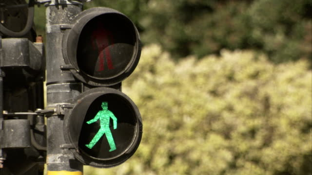 Pedestrian crossing signals change and flash. Available in HD
