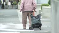 A pedestrian pulls a tote bag across a crosswalk.