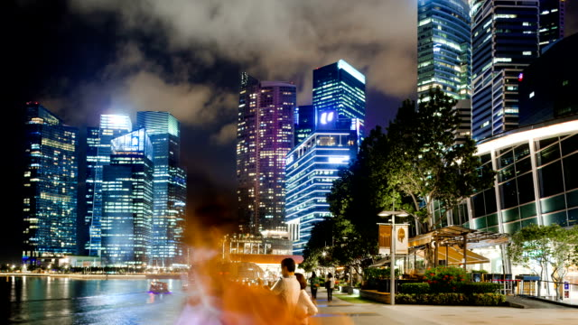 pedestrian traveling on modern commercial street in singapore at night,hyper lapse.