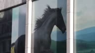 Pedestrians pass a Lloyds bank branch a unit of Lloyds Banking Group Plc in London UK on Friday Aug 4 A picture of the black horse sits in a window...