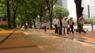 WS Pedestrians walking on pavement / Tokyo, Japan