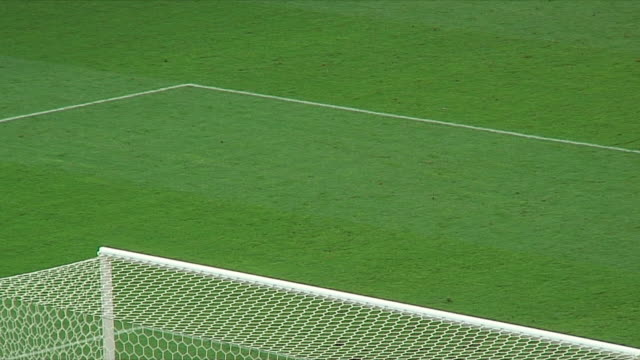 MS HA Penalty area of soccer field / Nuremberg, Germany