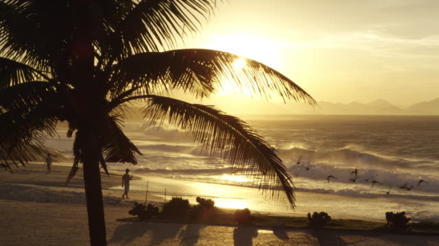People enjoying beach at sunset