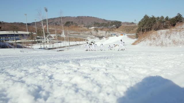 WS People enjoying cross country skiing / Pyeongchang, Gangwondo, South Korea