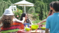 MS People enjoying in family picnic / East Hanover, New Jersey, United States