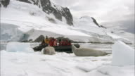 MS, People in inflatable raft passing seals lying on snow at water's edge, Antarctica