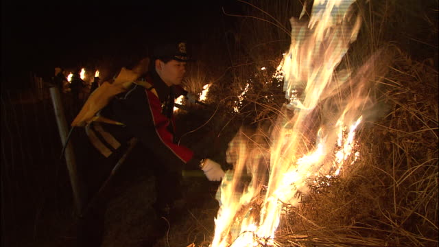 People light fires as part of annual Wakakusayama ritual (New Year mountain burning festival)