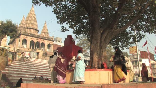 MS, LA, People making prayer offerings around tree growing in front of shrine, Varanasi, Uttar Pradesh, India