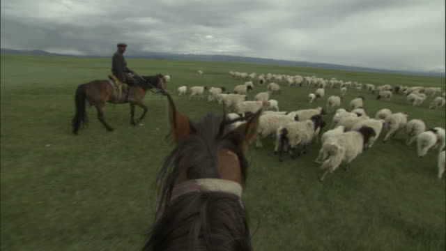 People on horseback herd sheep and goats, Bayanbulak grasslands.