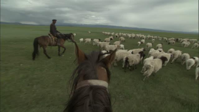 People on horseback herd sheep and goats, Bayanbulak grasslands.