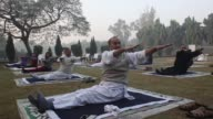 People perform arm stretches during a yoga class at Lodhi Gardens in New Delhi India on Sunday Nov 20 People perform yoga poses with an instructor...