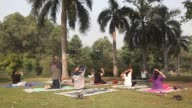 People perform yoga poses at Lodhi Gardens in New Delhi India on Sunday Nov 20 An instructor right and students perform breathing exercises An...