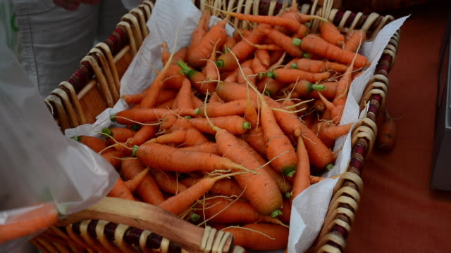 People picking fresh carrots from farmers market