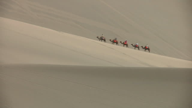 WS People riding camels up sand dune / Dunhuang, Gansu, China