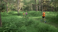 Freistil-Läufer auf Waldweg in den Tag