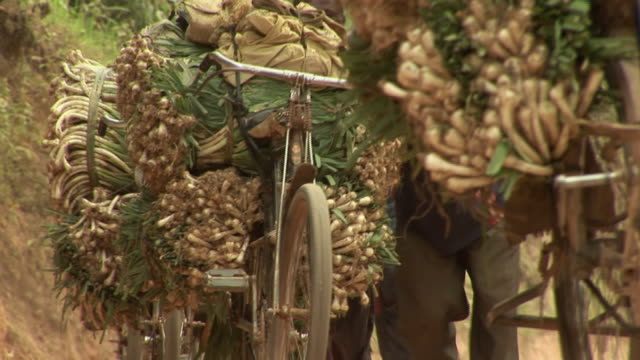 CU LA People transporting vegetables on bicycles, Congo