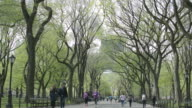 People walking along Central Park's mall during spring.