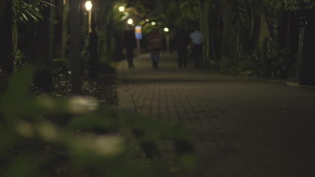 People walking in the botanical gardens in Brisbane, at night