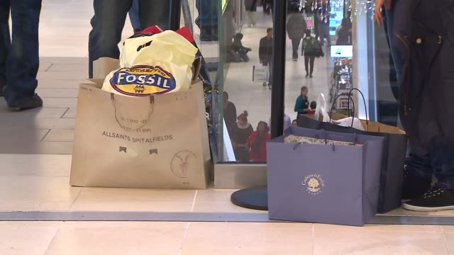 WGN People with shopping bags at the Fashion Outlets of Chicago on November 29 2013 in Rosemont Illinois