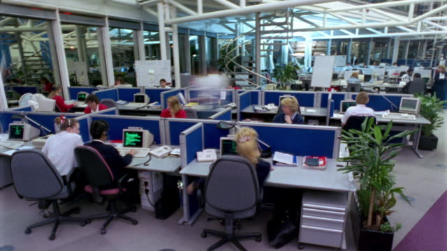T/L, MS, People working in office
