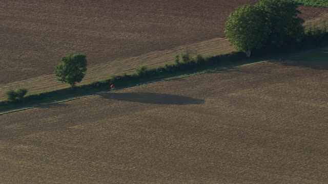 MS AERIAL Person bicycling by edge of field / Picardy, France