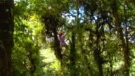 WS Person enjoying canopy tour, Monteverde, Costa Rica