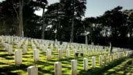 A person walks through a military cemetery.