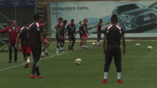 Peru y Honduras se enfrentan el miercoles a Nueva Zelanda y Australia intentando sumarse a los siete latinoamericanos ya clasificados para el Mundial...