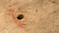 A petroglyph of a bushman is illustrated next to a hole in a cave wall. Available in HD.