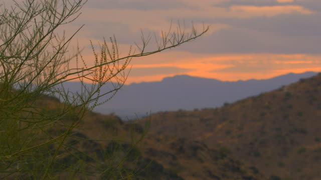 Phoenix, ArizonaMountain side during the day