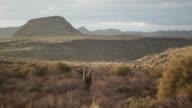 Phoenix Desert Landscape