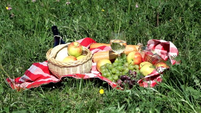 Picnic basket on meadow