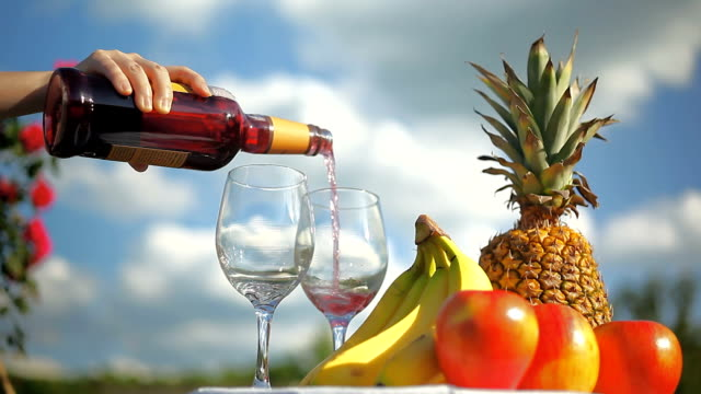 Picnic Party Preparation with Wine and Fruits Under White Clouds and Blue Sky