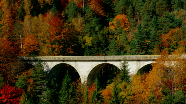 Picturesque arch bridge through colorful autumn forest
