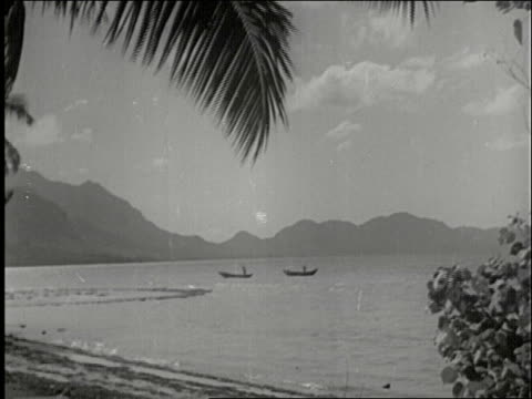 picturesque view of island beach mountains and boats / people walk tropical jungle beach country road lined with palm trees / PAN across beach with...