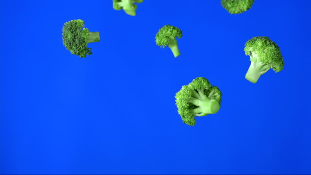 Pieces Of Broccoli Falling (Super Slow Motion)