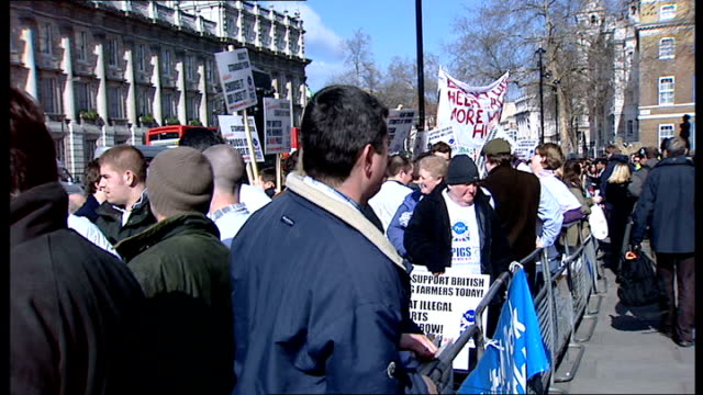 Pig famers come to London to demonstrate against soaring cost of grain Pig farmer protesters holding placards 'support British pig farmers today' at...
