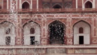 Pigeon taking respite in the water from a foutain in the Char Bagh garden, surrounding Humayun's Tomb, New Delhi