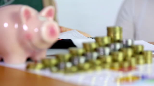 piggy bank and counting household budget