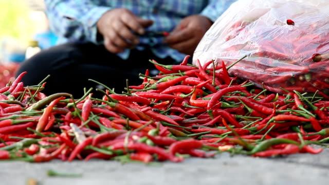 Haufen von Chili in lokalen Markt